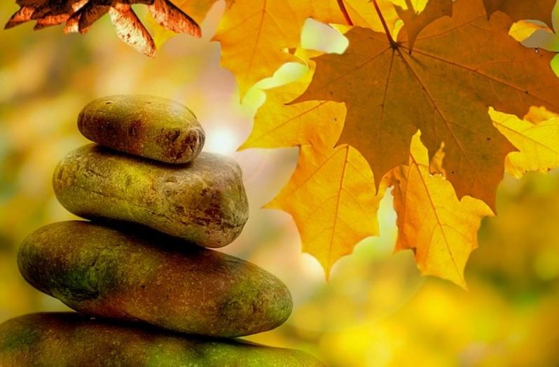 automne zen